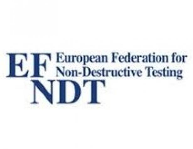 logo EFNDT male
